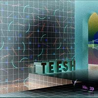 TEESH 33 Banner Invert